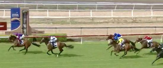 First 2yo Runners for the Stable Steal the Show at Wyong!