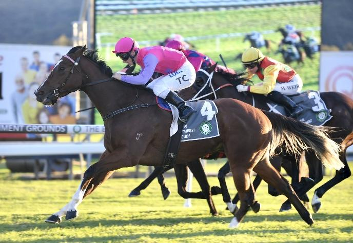 Celer Bounces Back into the Winners Circle at Gosford on Thursday!