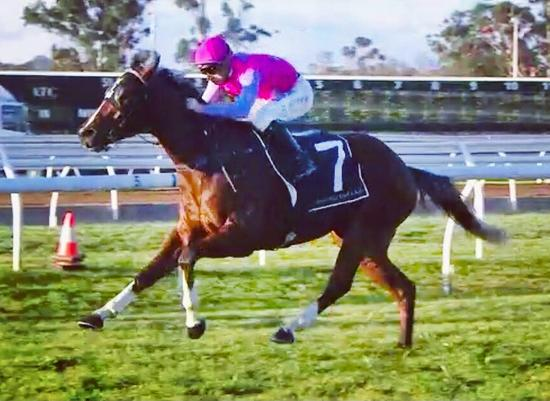 Celer Excels at Warwick Farm on Wednesday with the Blinkers On!
