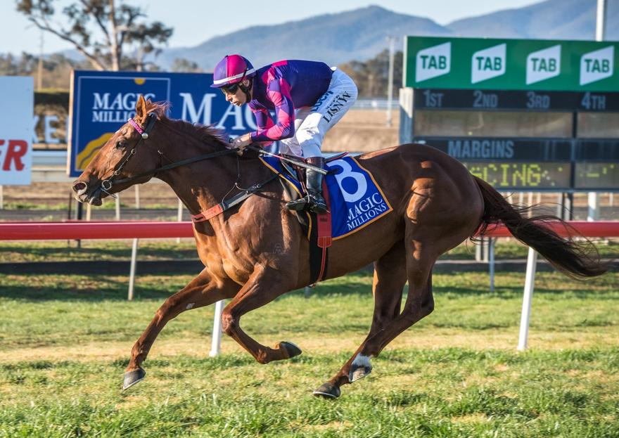 Belle De Vega wins Queen of the Valley at Muswellbrook
