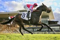 Well-deserved Stakes Win to Trumbull on Saturday at Rosehill
