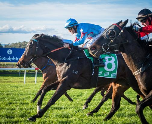 Joy for Us Excels on Heavy 10 at Muswellbrook on Sunday!