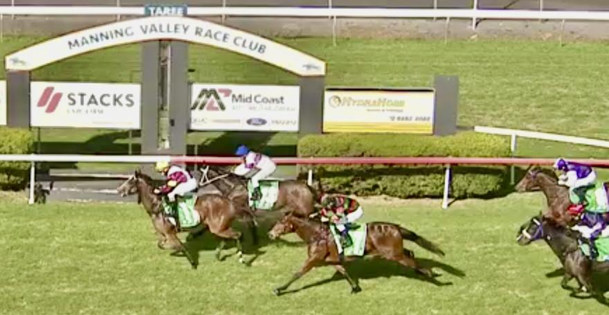 Trojan Angel Wins on Debut at Taree!