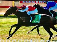 Sarah Elizabeth Wins at Goulburn on Monday!