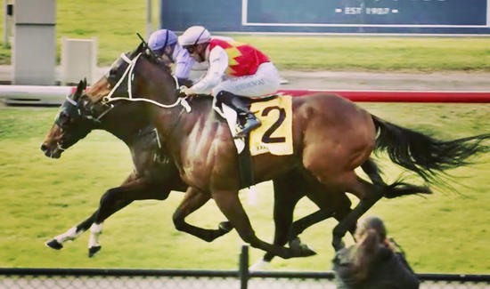Underboss Breaks Maiden at Newcastle on Tuesday!