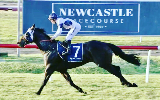 Holy Reign Bounces Back into the Winners Circle at Newcastle on Saturday!