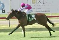Princess Betty Wins by 3 Lengths at Newcastle on Saturday!