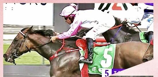 Pink Beau Captures First Win for New Stable!