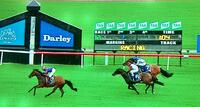 Tinka's Lad Scores Easy Maiden Win at just 2nd Race Start!
