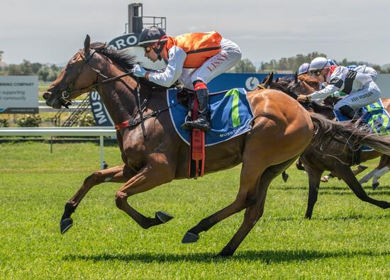 First Starter Wins Easily at Muswellbrook on Monday!