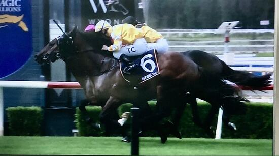 The Bullring Pulls out all Stops to Win at Wyong on Thursday!