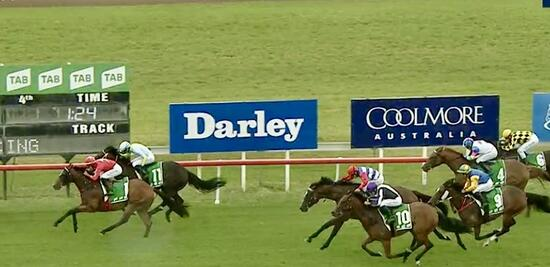Jervis Wins Maiden at just 2nd start for the Stable!