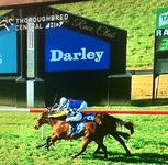 Save Your Kisses Scores Tenacious Win on Debut!