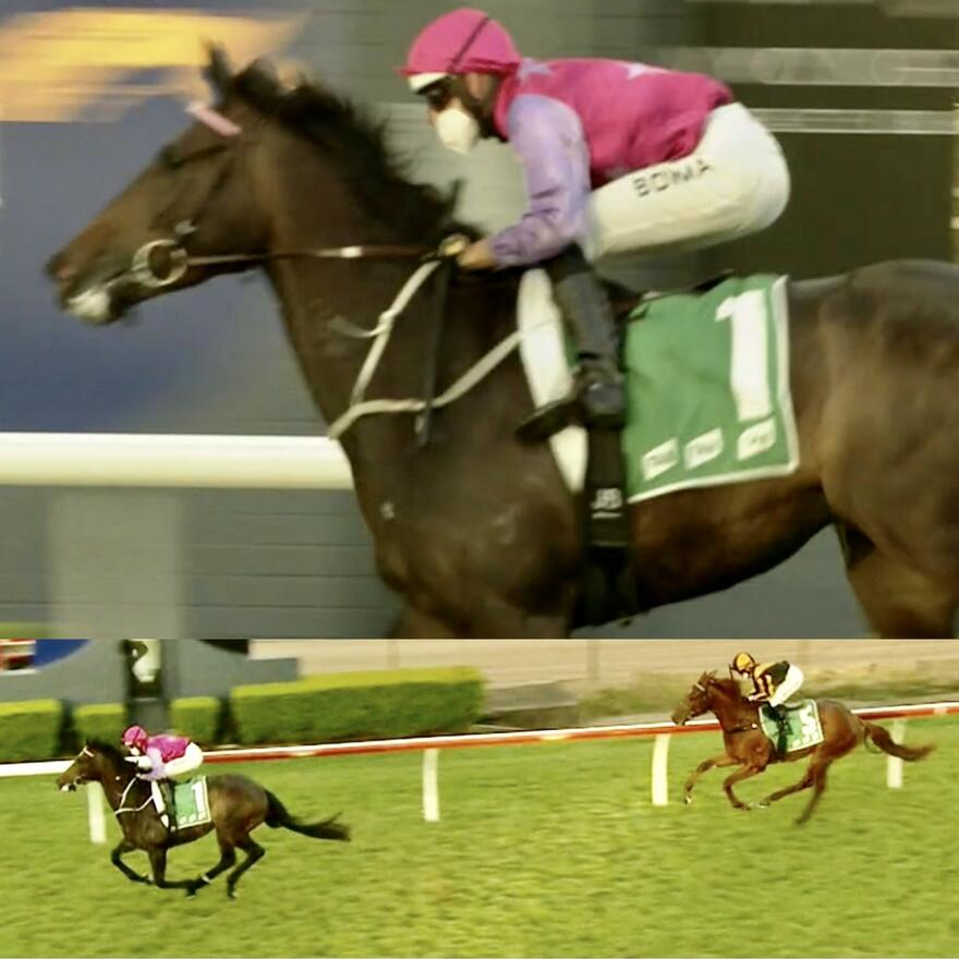 Different Strokes Books Himself a Spot in the Four Pillars with Easy Wyong Win!