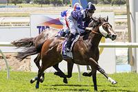 Oratorio Gelding Shocks in Aquanita Stakes