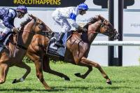Trademark Win for Andrews Youngster