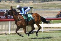 MacFarlane Takes Top Rising Star Points At Goulburn