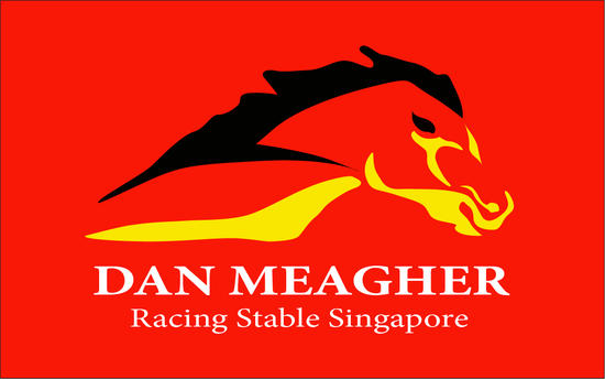 NZ READY TO RUN SALE - JOIN MEAGHER RACING IN THE WINNERS CIRCLE