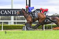 Well deserved victory for Reneged at Canterbury
