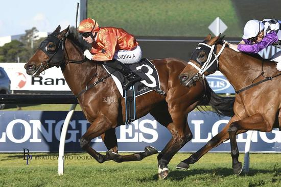 Dreamforce takes out the Winter Stakes at Rosehill