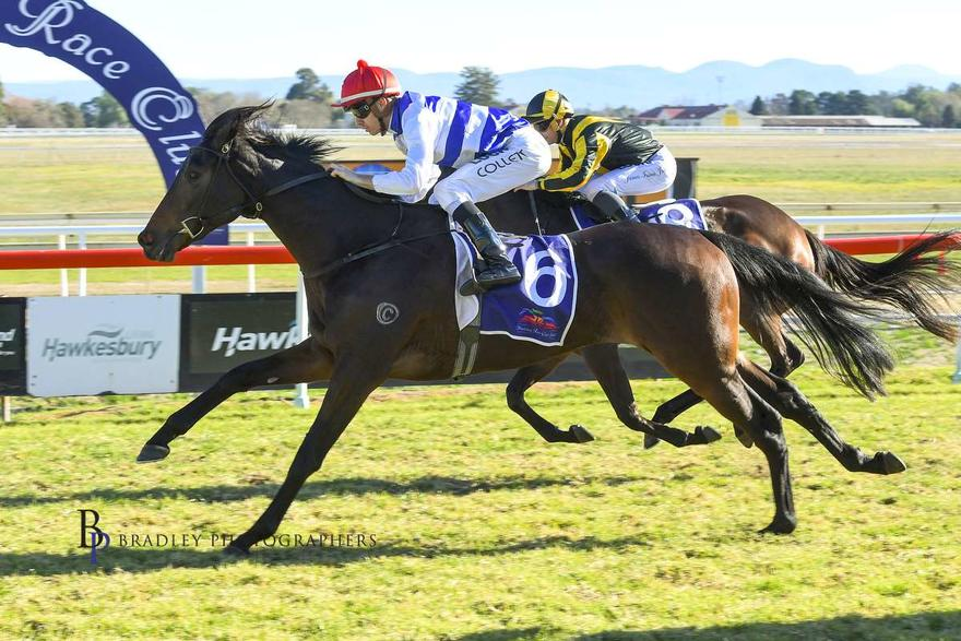 Etheridge shows promise at Hawkesbury