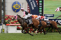 Bank of China Race Day in Hong Kong Selections