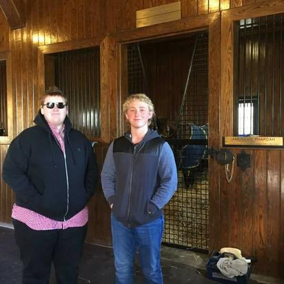 Insights in to the Keeneland Yearling Sale
