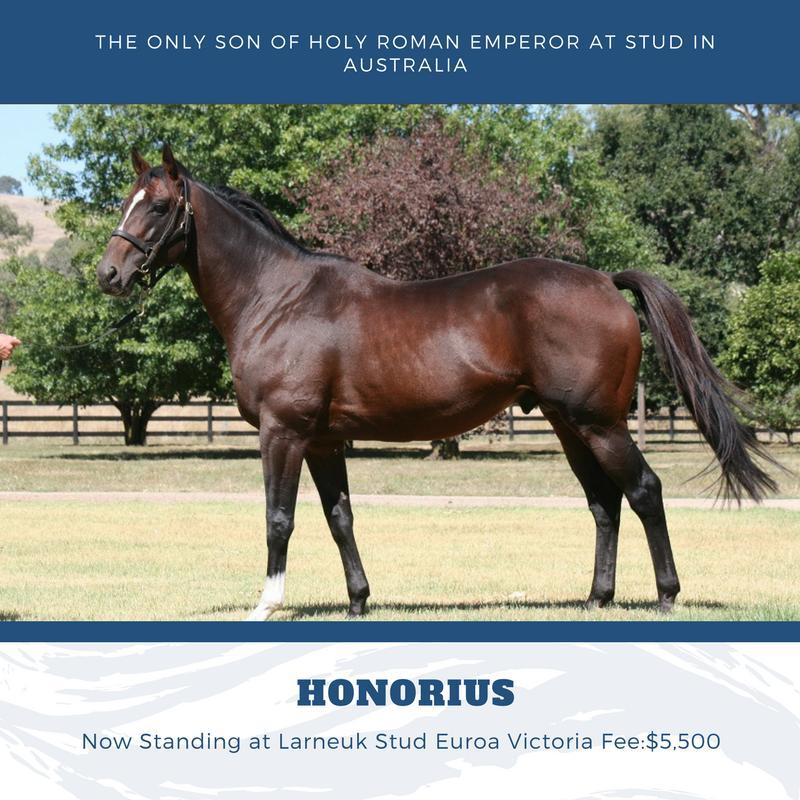 Australian Sires: Honorius
