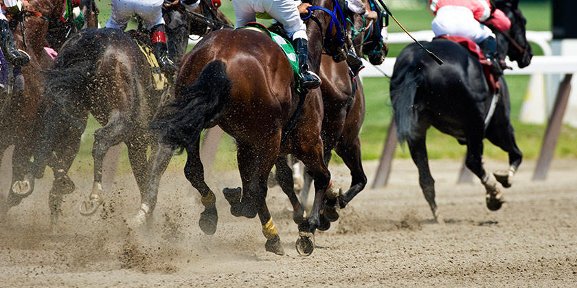 Become a Race Horse Owner
