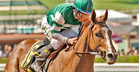 Stellar Wind sold for $6 million at Keeneland November Breeding Stock Sale
