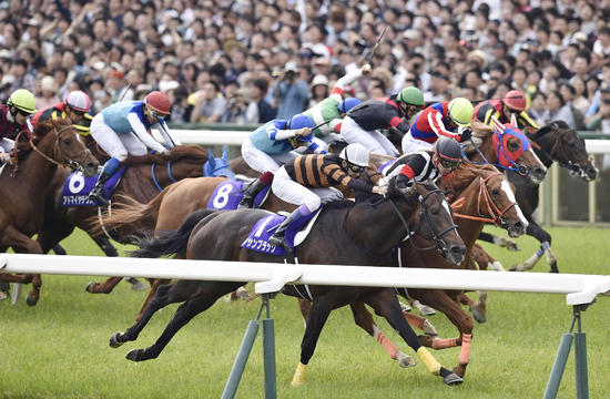 The 2017 Japan Cup Aidan O'Brien Takes on Asia
