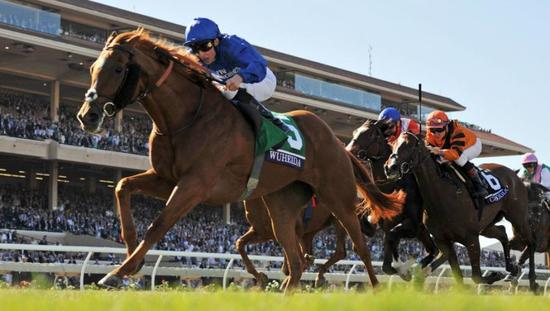​Dubawi Filly Takes G1 Breeders' Cup Filly & Mare Turf at Del Mar