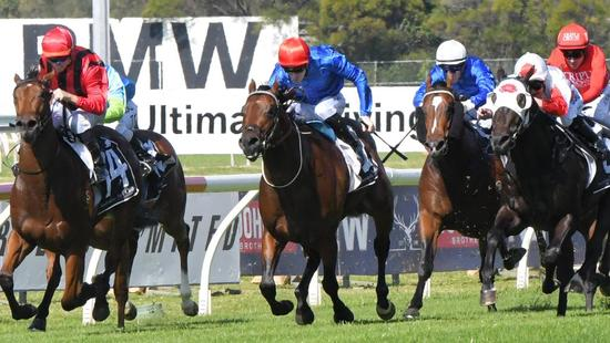 Investing in Horse Racing: Knightsbridge Bloodstock