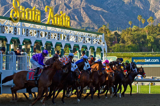 Knightsbridge Head to California with Jerry Hollendorfer