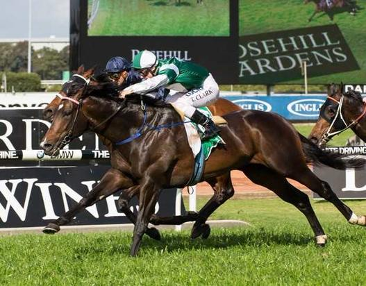 Here is your chance to race a Cluster (Fastnet Rock)