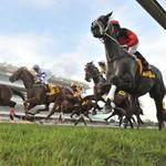 Singapore Horse Racing Preview for Friday Night