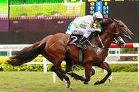 Singapore Horse Racing Friday Night Tips