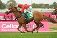 Dothraki Closes out Successful Queensland Carnival for Team Snowden