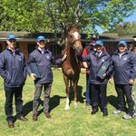 HOT SNITZEL - INGLIS GRADUATE GROUP 1 WINNER