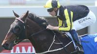Flippant Scores at Doomben for Back to Back Stakes Wins