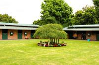 Snowden Racing's Open Day for Triple Crown Syndications