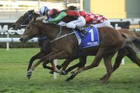 I've Got The Looks leads in quinella for Team Snowden