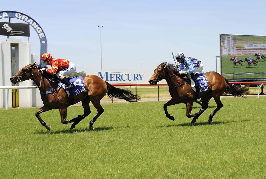 Princess Prevails At Kembla