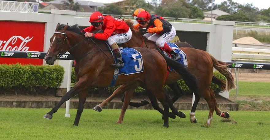 Secret Trails' Doomben Domination