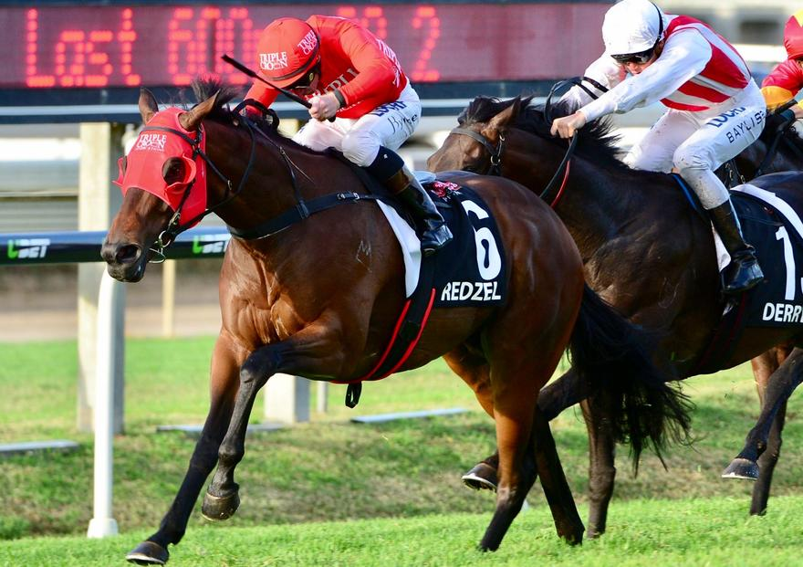 Red Roars In Doomben 10000
