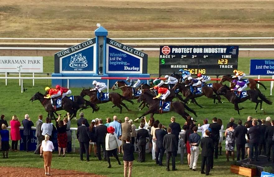 Guineas Victoire For France
