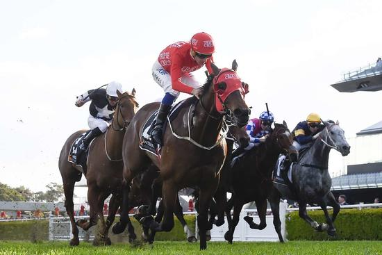 ​Redzel Ready For Everest