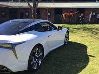 Experience amazing this Spring at Sydney City Lexus