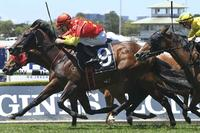 Bull Market And Poetic Charmer Land Quinella