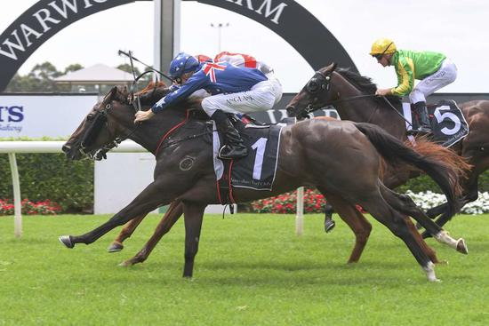 Aussie Day Victory For Amanito